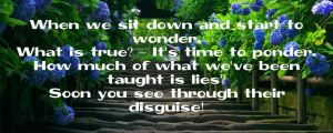 Wonder Ponder